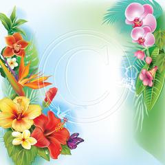 J02 Tropical Flowers 2