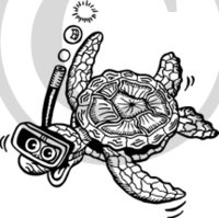 Tropical Illustration 27 Black & White Clip Art