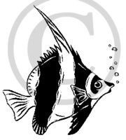 Hawaiian Fish (Kihi Kihi) B&W Cartoon 2 Clip Art
