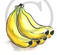 Hawaiian Banana Illustration Clip Art