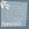 D13 Hawaii by AR Gray Blue 8x8 Paper