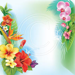J02 Tropical Flowers 2