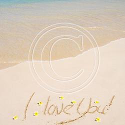 CC06 I Love You Plumeria in Sand 8x8 Paper