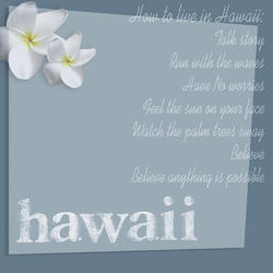 D13 Hawaii by AR Gray Blue