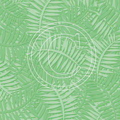 L19 Green Fern Fronds 8x8 Paper