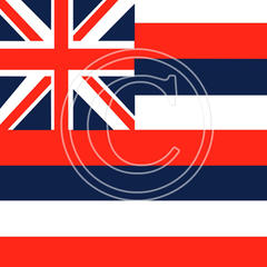 Z10 Hawaii Flag