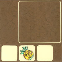 12x12 Small Pineapple