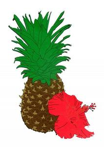 Pineapple and Hibiscus