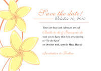 Graceful Plumeria Save The Date