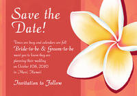 Beautiful Plumeria Save The Date Card