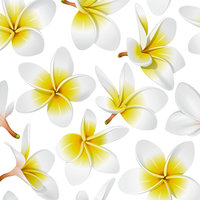 J15 Simple Plumeria Scatter 8x8 Paper