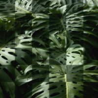 M06 Monstera Patchwork