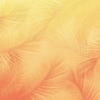 L17 Gradient Palm Orange