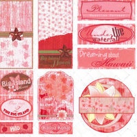 AA01 Big Island Journal Tags