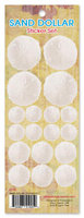 Sand Dollar Sticker Set